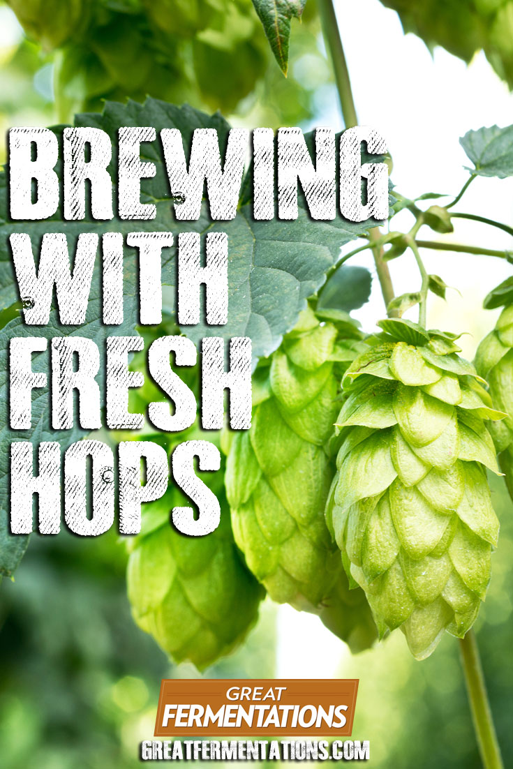 how-to-brew-with-fresh-hops-blog-pin